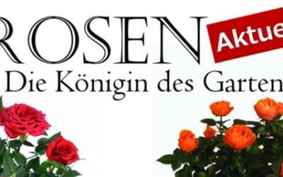 1A-Garten Ammer